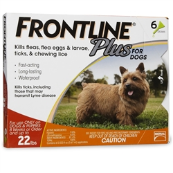 6 Dose Frontline Plus for Dogs 0-22 lbs - ORANGE