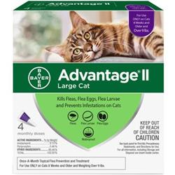 Advantage II Flea Control Large Cat (over 9 lbs.) - 4 MONTH