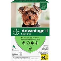 Advantage II Flea Control Small Dog (under 10 lbs.) - 6 MONTH