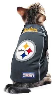 NFL Jersey- Steelers