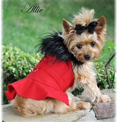 Designer Red Wool Blend Classic Dog Coat Harness and Fur Collar with Matching Leash