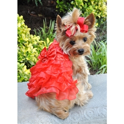 Christmas Red Satin Ruffled Dress with D Ring and Leash
