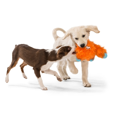 Jefferson Rowdies - Durable Plush Toys for Dogs