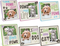 Pawsitive Photo Frame Assortment