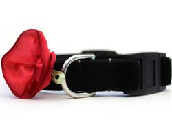 Carnation Red Velvet Cat Collar