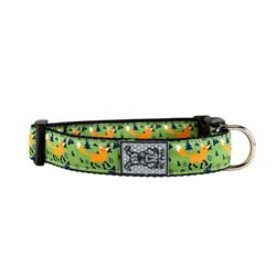 Collars & Leads - Sly Fox