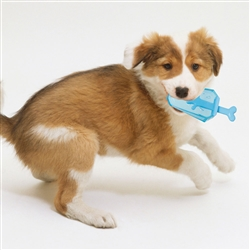 Ices 'Lick And Gnaw' Freezable Dog Chew And Teether Toy by Pet Life