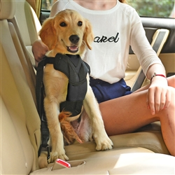 Pet Car Harness With Detachable Swivel Hook