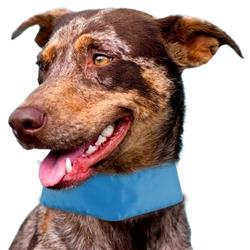 Summer-Cooling' Adjustable Cooling Dog Neck Wrap