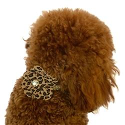 Cheetah Dog Collar Flower Slider
