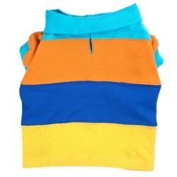 Primary Colorblock Polo