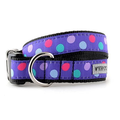Gumball Purple Collar & Lead Collection