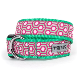 Pink/Green Hexagon Collar & Lead Collection