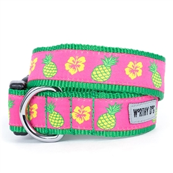 Pineapples Collar & Lead Collection