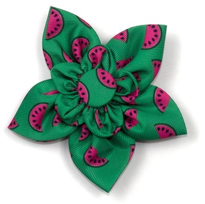 Watermelon Collar & Lead Collection