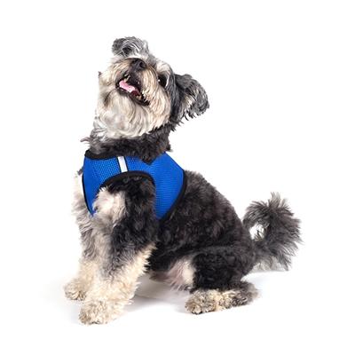 Royal Blue Sidekick Harness