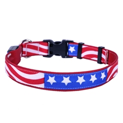 Americana on Solid Red ORION LED Dog Collar