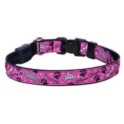 Diva Dog on Solid Black ORION LED Dog Collar