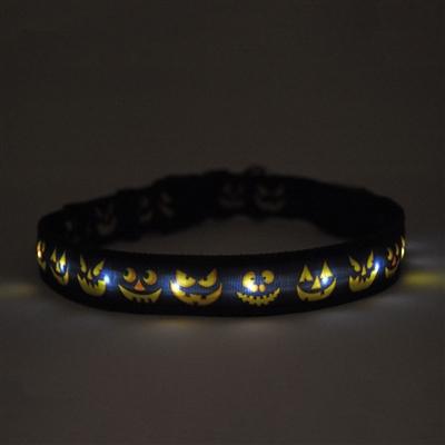 Jack O'Lantern on Solid Black ORION LED Dog Collar