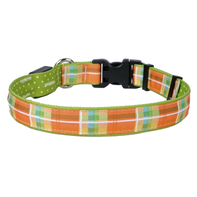 Madras Orange on Old Green Polka Dot ORION LED Dog Collar