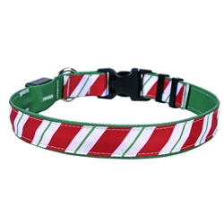 Peppermint Stick on Solid Kelly Green ORION LED Dog Collar