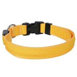 Solid Goldenrod ORION LED Dog Collar