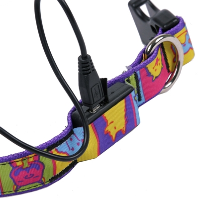 Solid Magenta ORION LED Dog Collar