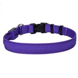 Solid Purple ORION LED Dog Collar