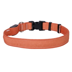 Solid Salmon ORION LED Dog Collar