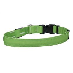 Solid Spring Green ORION LED Dog Collar