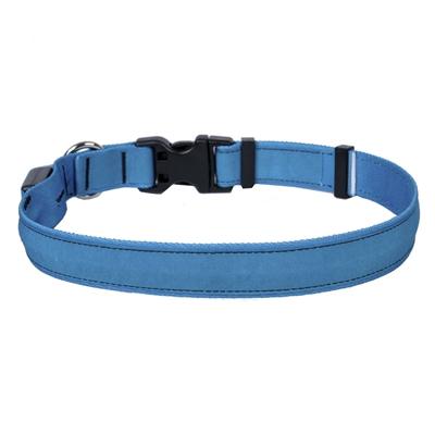 Solid Teal ORION LED Dog Collar
