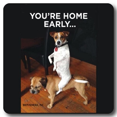 You're Home Early Coaster
