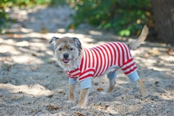 Ethical Pet Striped Pajama in Red
