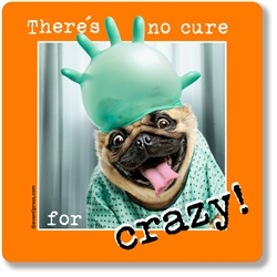 There's No Cure For Crazy! Coaster