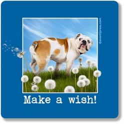 Make A Wish! Coaster