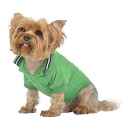 Emerald Green Polo Shirt