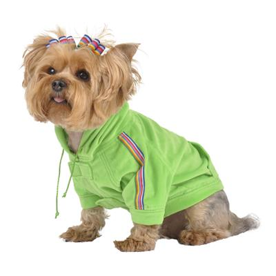 Lime Green Velour Dog Hoodie