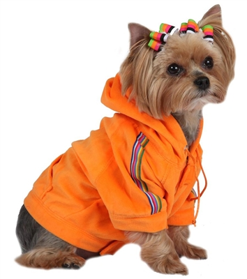 Tangerine Velour Dog Hoodie