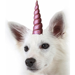 Unicorn Horn for Small and Medium Pets