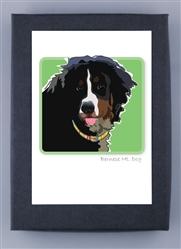 Bernese Mountain Dog - Grrreen Box Notes