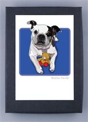 Boston Terrier - Grrreen Box Notes