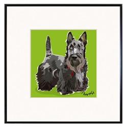 Framed Print: Scottish Terrier