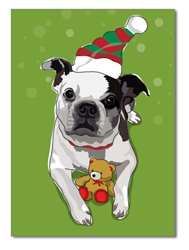 Holiday:  Boston Terrier