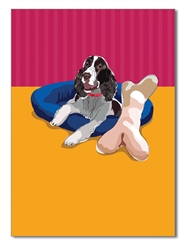 Birthday:  Springer Spaniel & Big Bone