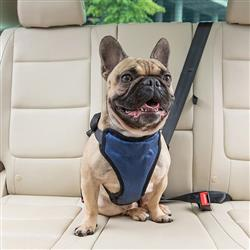 Happy Ride™ Vehicle Safety Harness