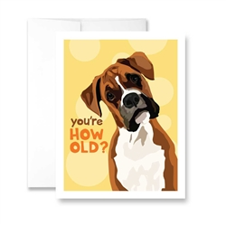 You're How Old? (Boxer) Greeting Card - Pack of 6 cards