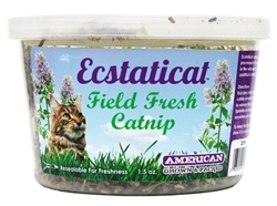 Ecstaticat 1.5 oz Catnip Fresh Cup