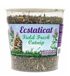 Ecstaticat 2.5 oz Catnip Fresh Cup