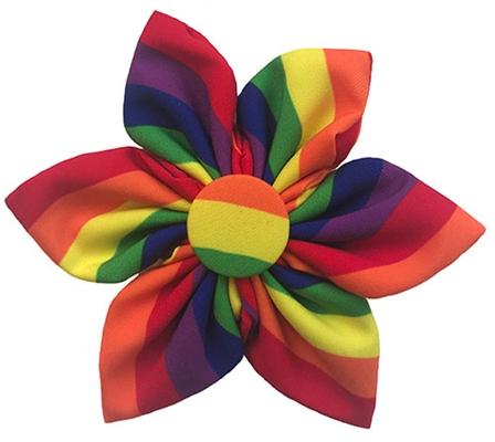 Pride Pinwheel by Huxley & Kent