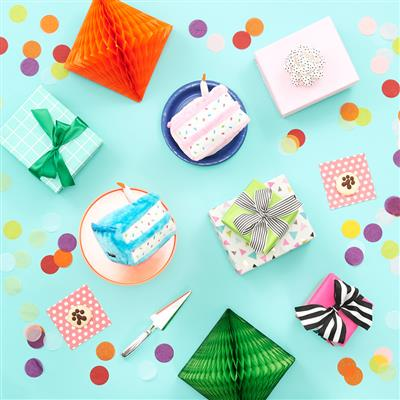 Zippy Paws - Birthday Cake
